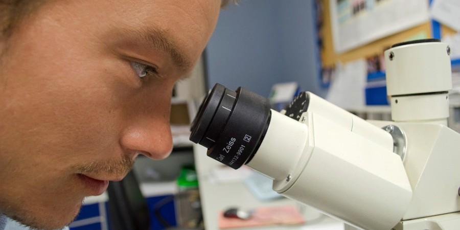 Raport specjalny: Powszechne testy diagnostyczne to szybszy powrót do pracy