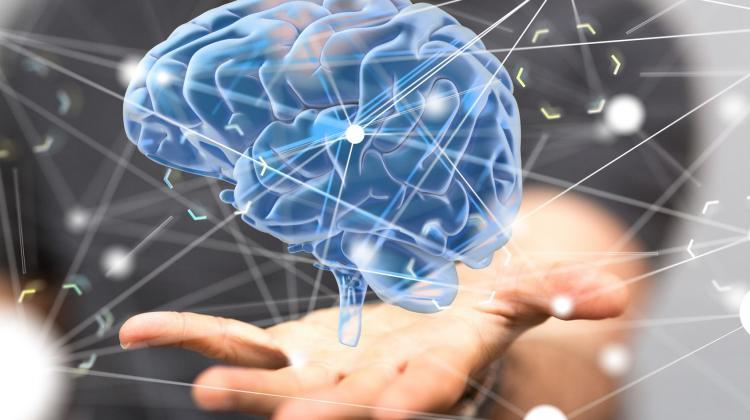 Świadomość poza materią – nowy pomysł prof. McFaddena