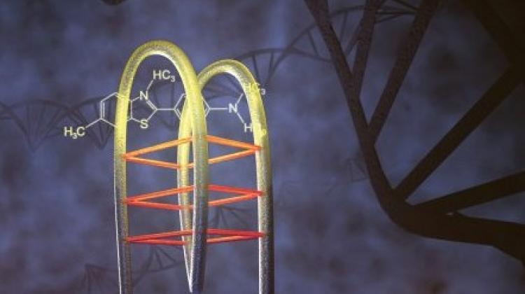 Fizycy UW laserem i barwnikiem wykrywają szkodliwe zmiany w DNA